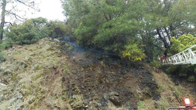 Marmaris'te Orman Yangını Ucuz Atlatıldı