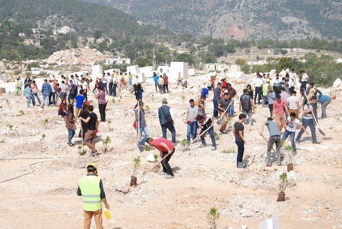 Silifke'de Bulunan Mermer Ocaklarına 44 Bin Fidan Dikildi