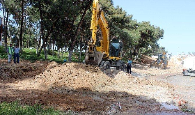 Didim'de Çamlık Bölgesinde Yeni Çalışma Başlatıldı.