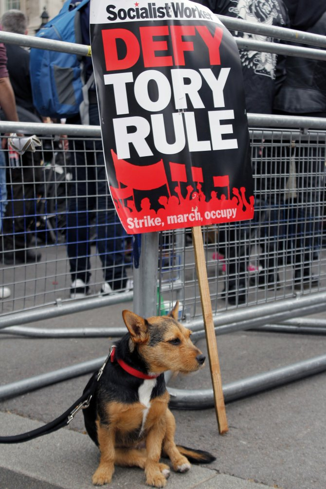 İngiltere Başbakanı Cameron protesto edildi