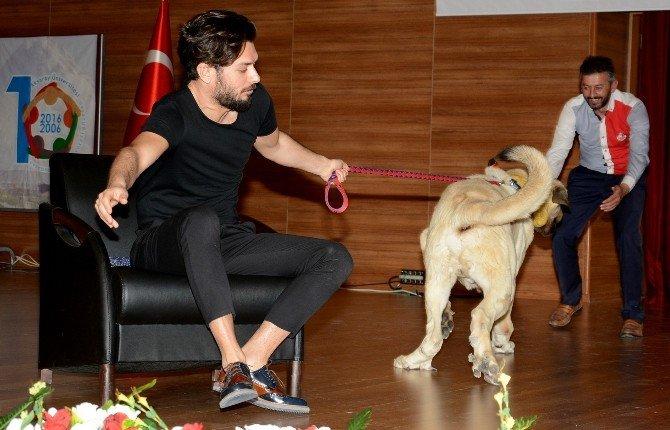 Anadolu Aslanı, Hayrettin'i Sahneden Çekti