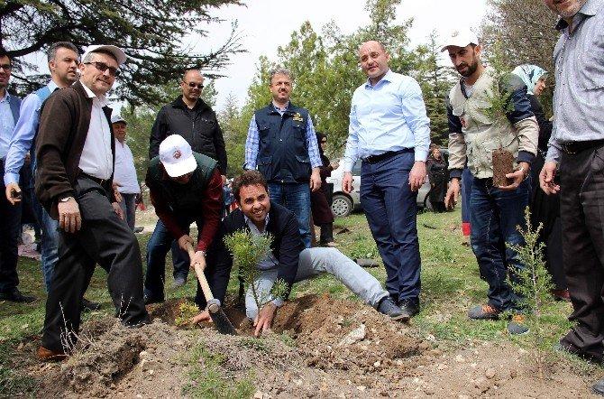 Kütahya'da 'Yetim Kardeş Hatıra Ormanı' Oluşturuldu