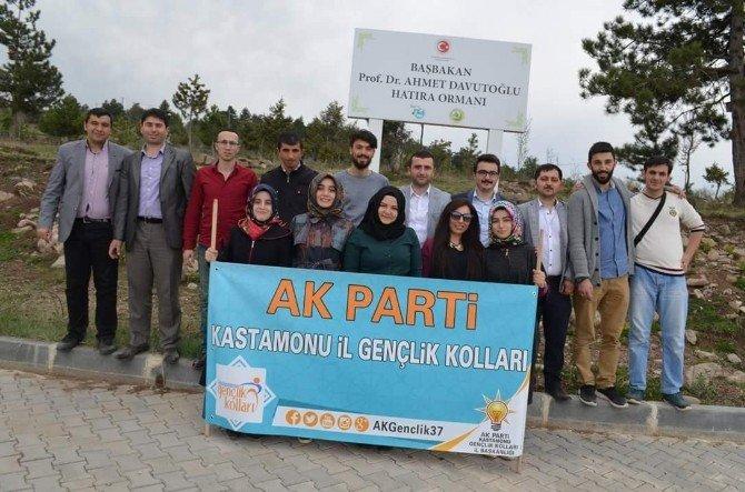 AK Parti İl Gençlik Kolları, Fidan Dikti