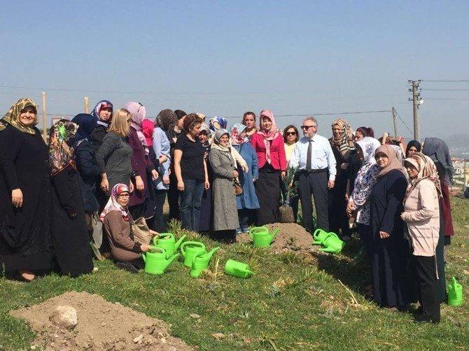 AK Partili Kadınlardan Hatıra Ormanı