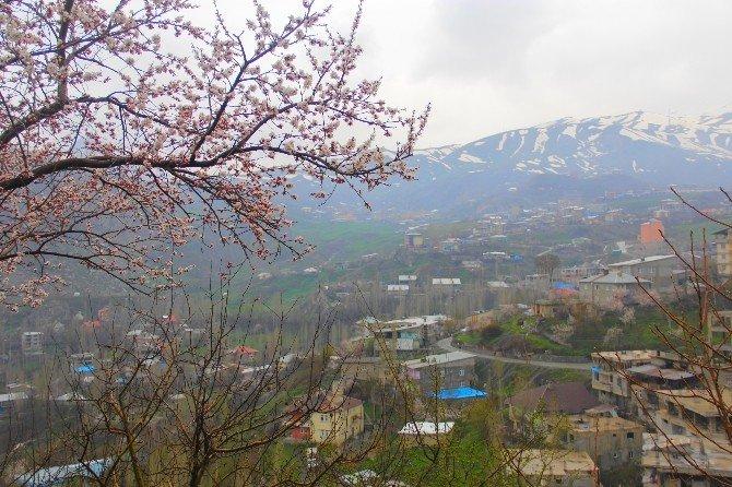Karlar Eriyince Güzellikler Ortaya Çıktı