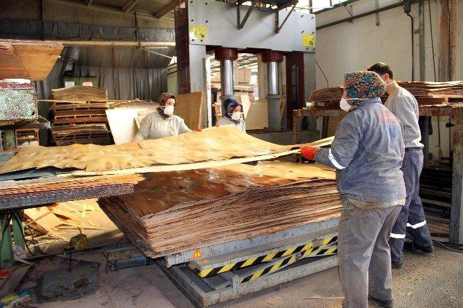Mercedes Ve Man'ın Parçaları Kastamonu'da Üretiliyor