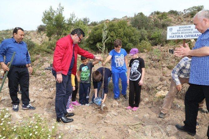 Bodrum'da Yeşile Duyarlılık Etkinliği