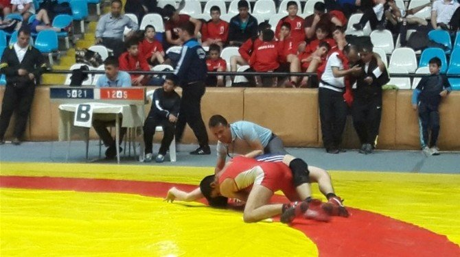 Erzincan'da Güreş Müsabakaları Tamamlandı
