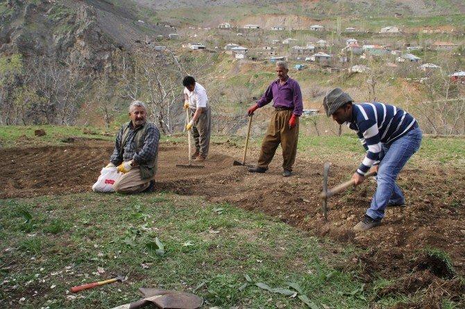 Sınır Köylerinde Bahar Mesaisi
