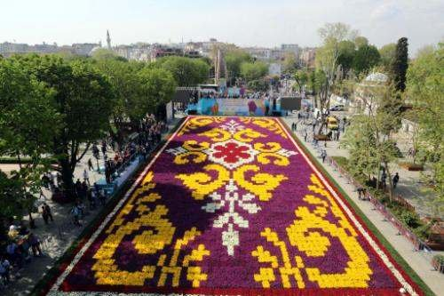Lale halı Sultanahmet'te görücüye çıktı