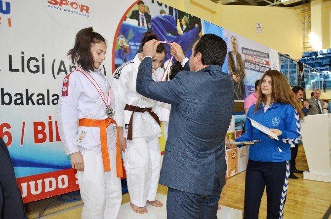 Bilecik'in Ev Sahipliği Yaptığı Analig Judo Final Müsabakaları Sona Erdi