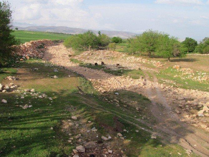 Araban'da Çiftçilerin Son Umudu Karasu Çayı Da Kurudu