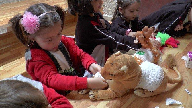 Anaokulu Öğrencileri Hayvan Figürlü Pelüş Oyuncakları Tedavi Etti