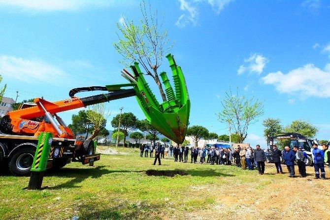 Ağaçlar Kesilmekten Kurtuluyor
