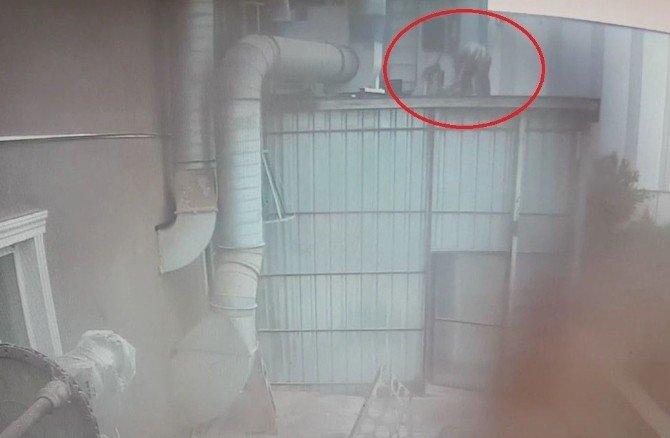 Mobilya Fabrikasında İş Kazası: 1 Ölü