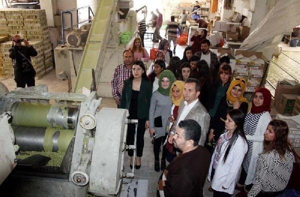 Nizip Meslek Yüksekokulu Öğrencileri Sabun Fabrikasını Ziyaret Etti