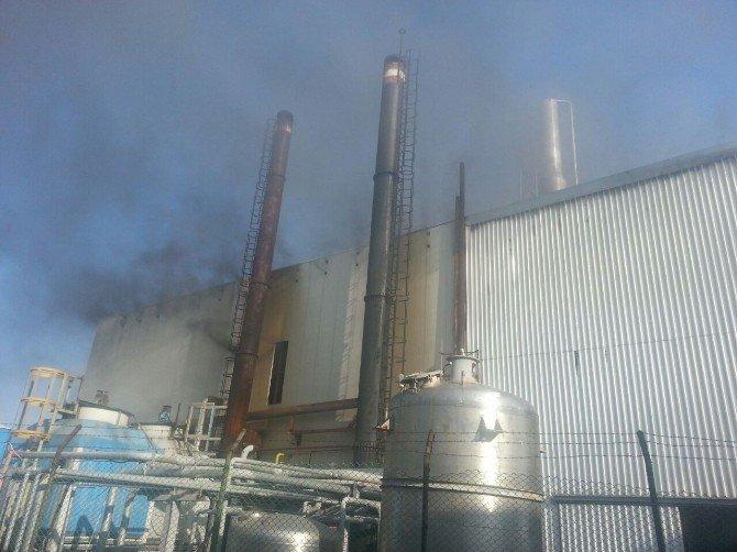 Sakarya'da Tekstil Fabrikasında Yangın: 2 Yaralı