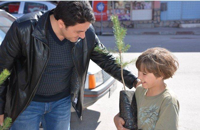 Seyitgazi Belediyesi 10 Bin Fidan Dağıttı