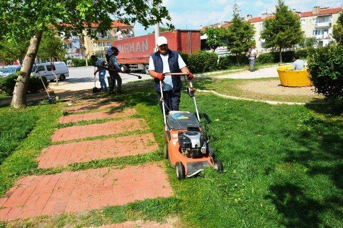 Yunusemre'de Çim Biçme Çalışmaları