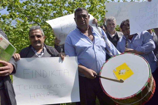 Fındığın fiyatının düşmesini davul zurna eşliğinde oynayarak protesto ettiler