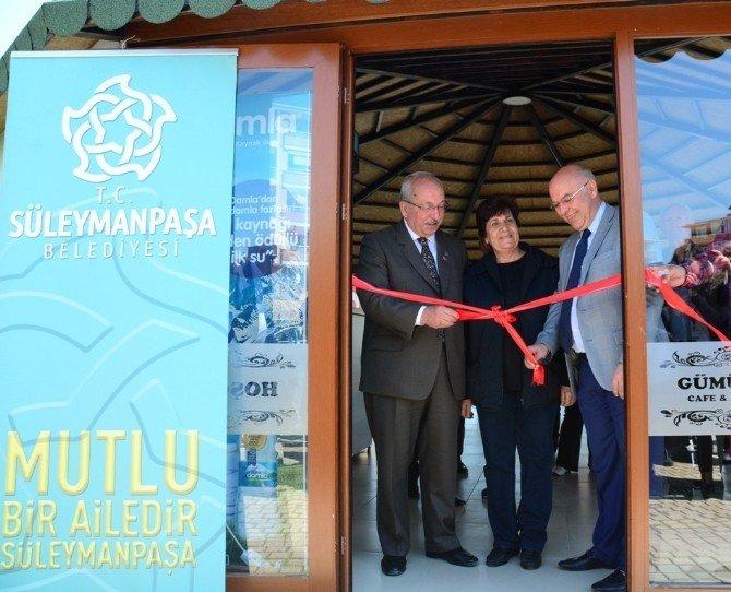 Altınova'ya Yeni Çay Bahçesi
