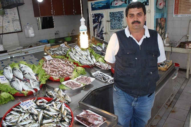 Av Yasağı Başlıyor, Balıkçılar Dönüyor