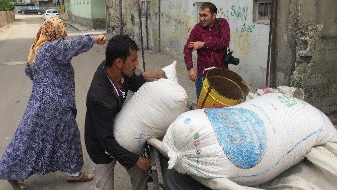 70'lik Kadın Buğdaylarını Çalan Hırsızı Kıskıvrak Yakaladı