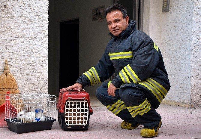 Komşuların Duyarlılığı Hayvanların Canını Kurtardı