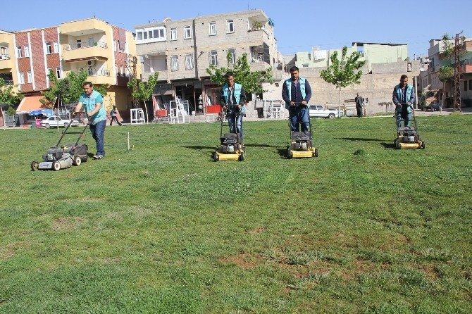 Eyyübiye'de Yeşil Alanlara Bakım Çalışmaları Devam Ediyor
