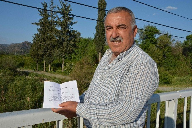 Dalaman'da Ağaç Kesimine Tepki