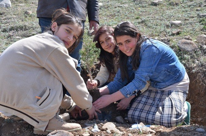 Narman'da Öğrencilerin Ağaç Dikme Sevinci