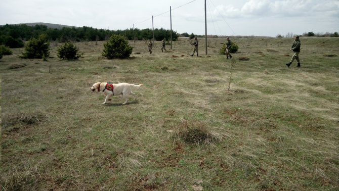 Kayıp şahıs iz takip köpekleriyle aranıyor