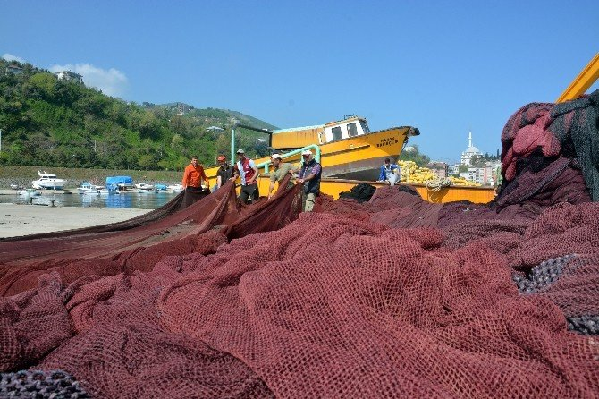 Balıkçılar İçin Av Sezonu Yarın Sona Eriyor