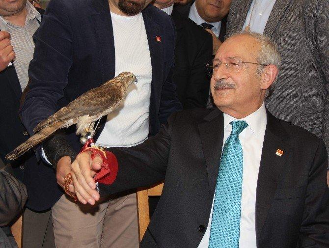 CHP Genel Başkanı Kılıçdaroğlu Rize'de