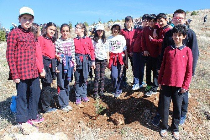 Öğrenciler Ağaç Dikti