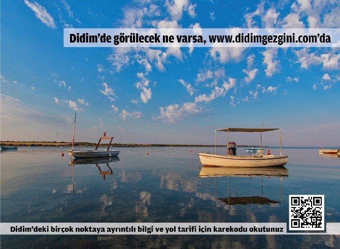 GEKA Destekli Kurulan 'Didimgezgini.com' İlk 7 Ayda 84 Bin Kişi Ziyaret Etti