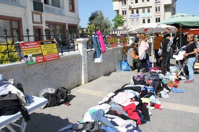 Didim'de Sokak Hayvanları Yararına Bir Araya Geldiler