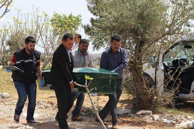 Gaziantep'te Enkaza Gömülü Erkek Cesedi Bulundu