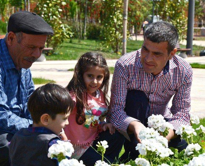 Çift Kol Nakilli Mustafa Sağır, EXPO 2016 Alanına Ağaç Dikti