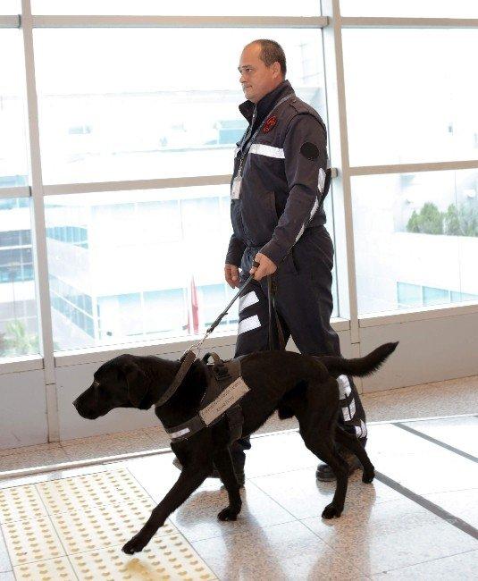 Tav, Güvenlik Personelinin Üniformalarını Değiştirdi