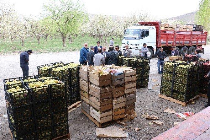 Yahyalı'dan Nusaybin'deki Güvenlik Güçlerine 20 Ton Elma