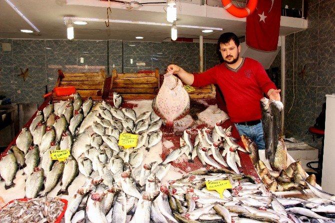 Av Sezonu Kapandı, Balık Fiyatları Arttı