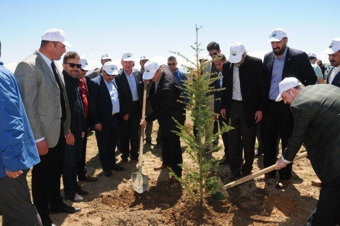 Van'da 'Harun Konak Hatıra Ormanı' Oluşturuldu