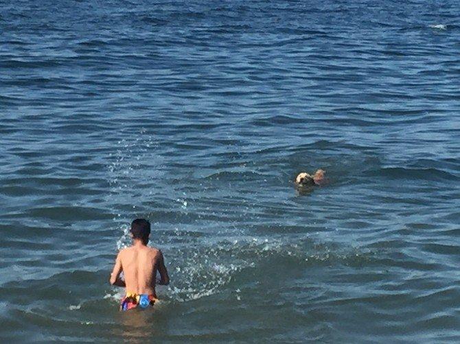 Güzelyalı'da Çocuklar Denizin Keyfini Çıkardı