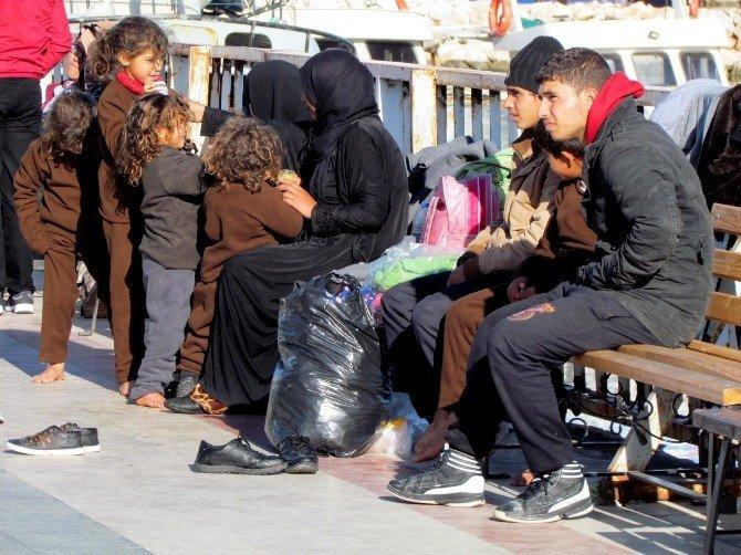 Çeşme'de 45 Sığınmacı Yakalandı