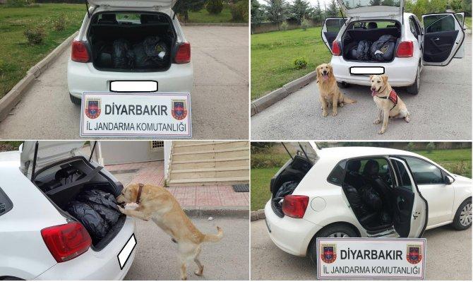 Diyarbakır'da uyuşturucu operasyonu