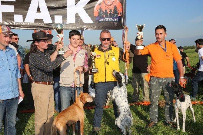 Fermalı Av Köpekleri Yarışması Şölen Havasında Geçti