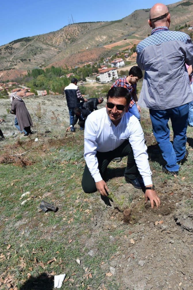 TSO çalışanları fidanla toprağı buluşturdu