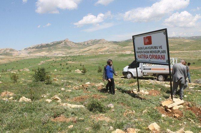 """Mardin'de """"Basın Hatıra Ormanı"""" Kuruldu"""