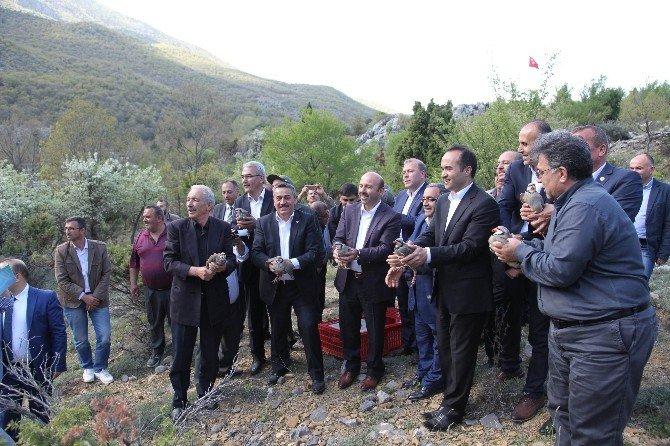 Bakan Yardımcısı Tüfekci Kuğulu Vadisi Projesini İnceledi